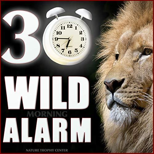 30 Wild Morning Alarm -