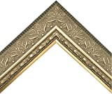 Vintage Ornate Warm Silver Picture Frame with Embossed Botonical Pattern (24x36 Inch)