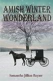 Amish Winter Wonderland: Book Two