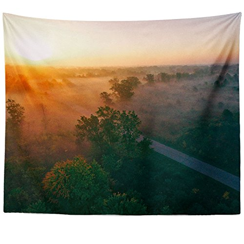 Westlake Art Wall Hanging Tapestry - Tree Forest - Photography Home Decor Living Room - 68x80in (a58z)