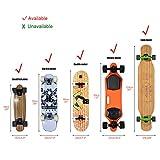 Nice Pies Universal Skateboard Shoulder Carrier