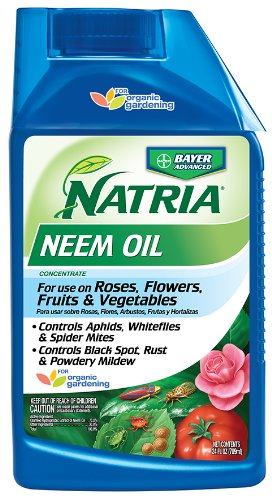 Bayer Advanced NATRIA 706240 Neem Oil Concentrate Pest Control, (Disease Control Concentrate)