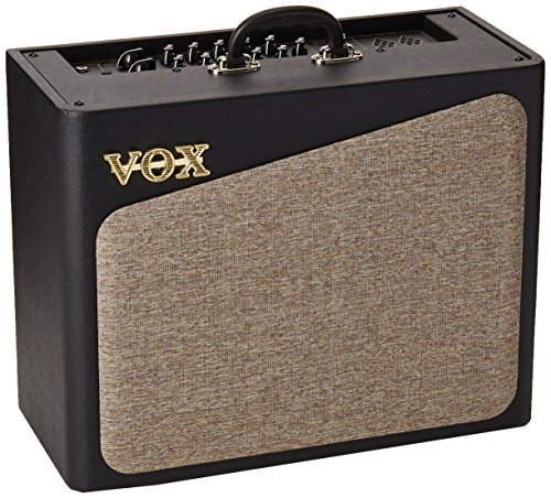 Head Custom Cabinet Amp (Vox AV30 Analog Valve Modeling Amplifier, 1x10)
