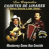 Monterrey Como Has Crecido