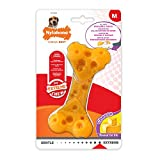 Best Nylabone Dog Toys - Nylabone DuraChew Cheese Bone, Dog Bone, Medium Review