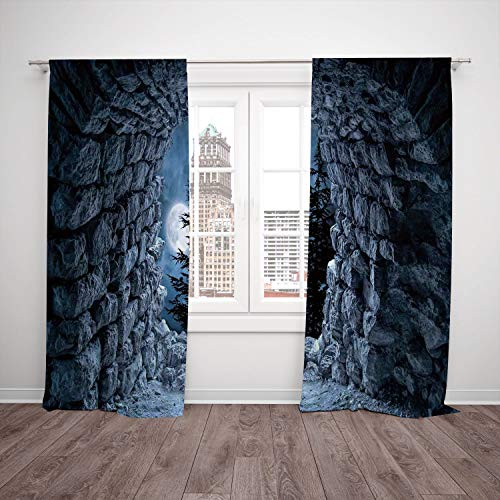 SCOCICI Satin Window Drapes Kitchen Curtains [ Gothic Decor,Dark Cave The Light Full Moon at Night Scary Horror Medieval Gothic Theme Artwork,Blue Grey] Bedroom Living Room Dorm Kitchen Cafe