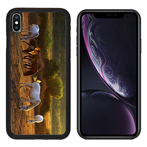 MSD Apple iPhone XR Case Aluminum Backplate Bumper Snap Case Image ID: 10987653 White and Brown Horses pasturing in The Countryside at Sunset