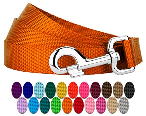 Country Brook Petz | Vibrant 21 Color Selection | Nylon Dog Leash (Orange, 1 inch width, 6 Foot) (Leash Color Dog Orange)