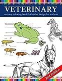Veterinary Anatomy Coloring Book: kids relax design