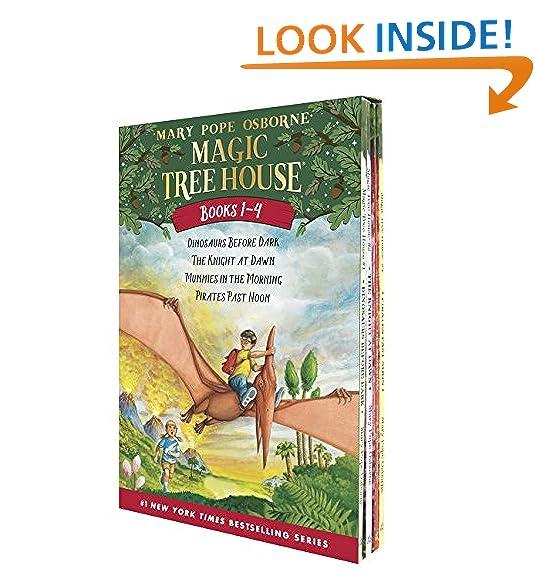 Teenage Age Boy Adventure Chapter Book Amazoncom