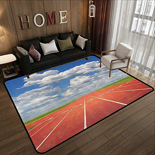 Indoor Outdoor Rugs,Olympics Decorations Collection,Sports Competition Running Track on a Sunny Day Lawn Grass Field Cloudy Sky,Blue White C 71