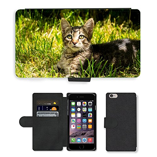 Just Phone Cases PU Leather Flip Custodia Protettiva Case Cover per // M00128261 Chaton Animaux Striped // Apple iPhone 6 PLUS 5.5""