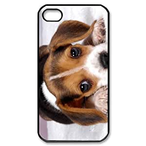 Beagle Animal Picture iPhone 4/4s Case Back Case for iphone 4/4s