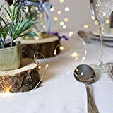 GardenDecor Led String Lights 50 Leds Decorative Fairy Battery Powered String Lights, Copper Wire light for Bedroom,Wedding(16ft/5m Warm White)
