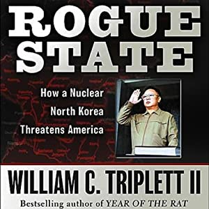 Rogue State Audiobook