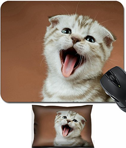 Yell Fabric - MSD Mouse Wrist Rest and Small Mousepad Set, 2pc Wrist Support design: 10084718 one striped white brown beautiful little kitten breed scottish fold on brown background close face yell
