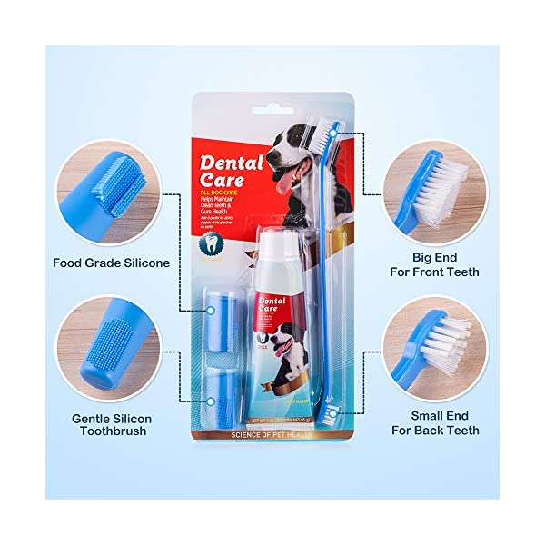 CooZero Dog Dental Care Kit, 2 Pack Dog Toothpaste and Dog Toothbrush Set Pet Soft Toothbrush Dog Finger Toothbrushes Pet Toothbrush for Cats and Dogs - Small to Large Dogs 3