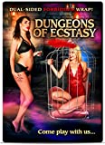 Dungeons of Ecstasy