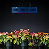 Sandalwood 300W Dual Mode LED Grow Light for Hydroponic Garden and Greenhouse Use – Dual Grow / Bloom Spectrum Review