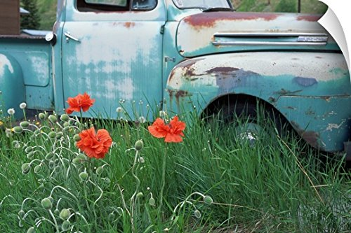 Canvas On Demand Wall Peel Wall Art Print entitled Poppies with old truck, Silverton, CO 24