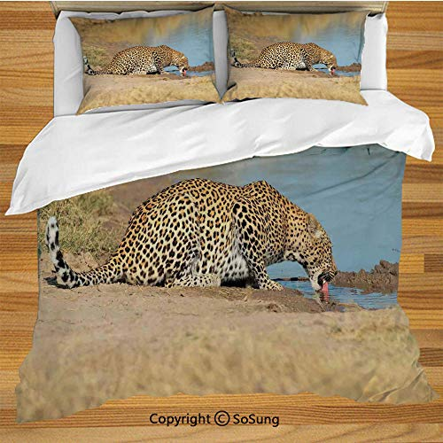 Safari Decor Queen Size Bedding Duvet Cover Set,Leopard Panther Drinking at Waterhole Safari Wild South African Animal Documentary Print Decorative 3 Piece Bedding Set with 2 Pillow Shams,Light ()