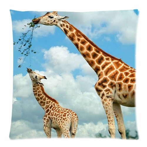 Animal print poster giraffe wallpaper Zippered Pillow Cases Cover Cushion Case 18x18 Inch by Honest Kind (Pillow Giraffe Fur)