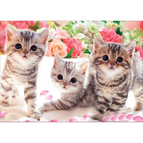 5D Diamond Painting Rhinestone Flower Kitten Lovely Embroidery Wallpaper DIY Cross Stitch Arts Kit Crystal for KidsFor Adult Decoration Drawing -