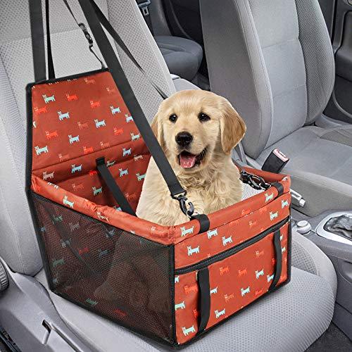 🥇 Productos para mascotas con observé agua buen aspecto