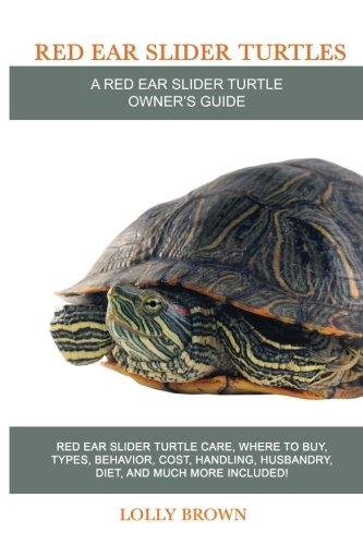 red ear slider turtle - 7