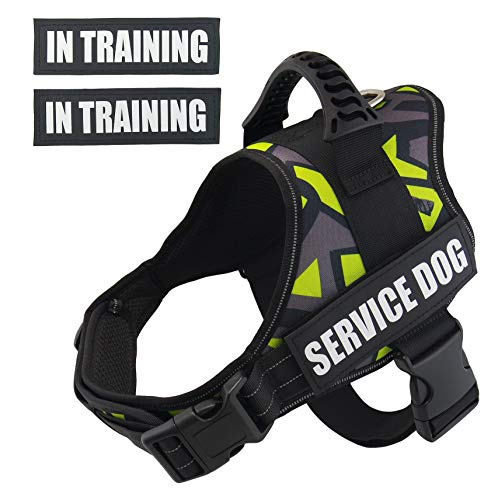 - Dihapet Service Dog Harness Vest, No Pull Large Dog Vest Quick Control for Training Walking, L