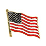 Bargain World Usa Flag Lapel Pin 3/4'' X 1/2'' (10Pc/Unit) (With Sticky Notes)