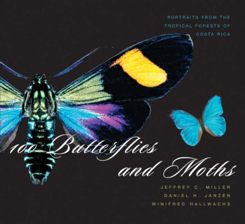 100 Butterflies and Moths: Portraits from the Tropical Forests of Costa Rica