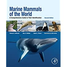 Marine Mammals of the World: A Comprehensive Guide to Their Identification