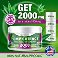 Hemp Cream for Pain Relief - 2000 Mg - Hemp Oil Cream for Sore Muscles & Joint Pain - Hemp Oil, Arnica, Emu Oil - Natural Arthritis & Back Pain Relief - Anti Inflammatory Cream - Made in USA