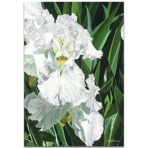 Traditional Wall Art 'Helens Iris' by Cathy Pearson - Floral Decor