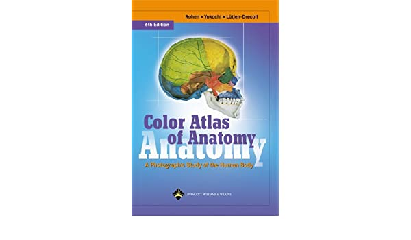 By Johannes W. Rohen - Color Atlas of Anatomy: A Photographic Study ...