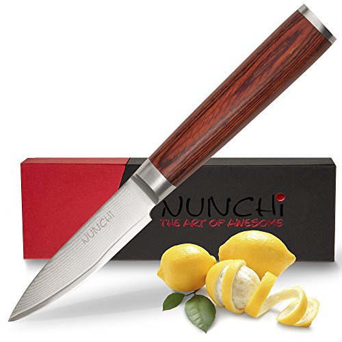 Professional Paring Knife, 3.5 Inch with Japanese VG-10 Stainless Steel - Ultra Sharp Kitchen Knives with a Stunning Damascus Blade and No-Slip Pakkawood Handle