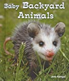 Baby Backyard Animals, Jane Katirgis, 0766037959
