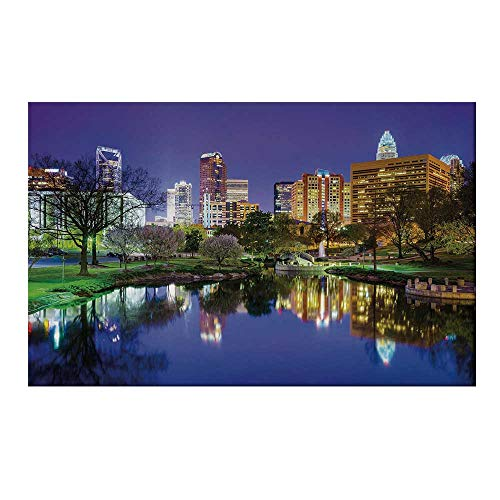 - YOLIYANA City Durable Door Mat,North Carolina Marshall Park United States American Night Reflections on Lake Photo for Home Office,15.7