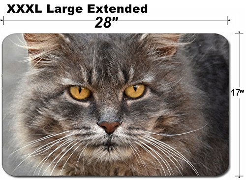 MSD Large Table Mat Non-Slip Natural Rubber Desk Pads Image ID: 37637892 Close up Portrait of a Grey cat by MSD