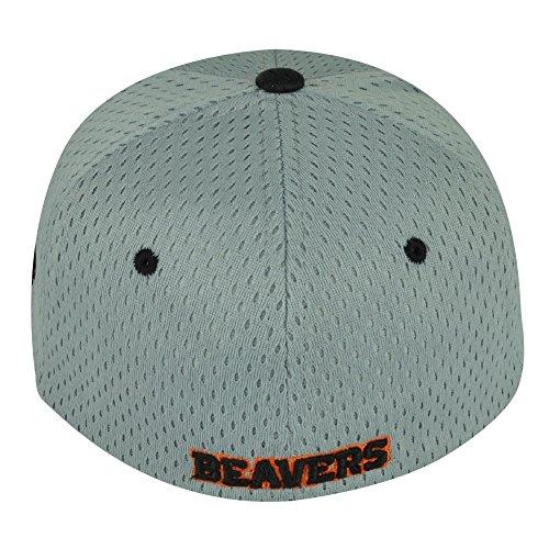 NCAA Oregon State Beavers Zephyr Flat Bill OSU Size Small Hat Cap Grey Black   Amazon.co.uk  Sports   Outdoors c857c9a89df8