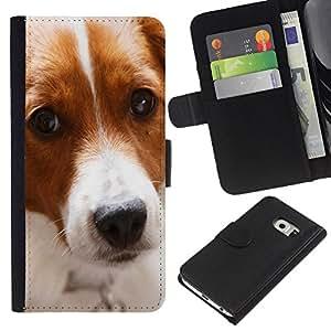 BearCase / Cuero de la tarjeta la carpeta del tirón Smartphone Slots Protección Holder /// Samsung Galaxy S6 EDGE /// Perro del border collie mascotas canino lindo