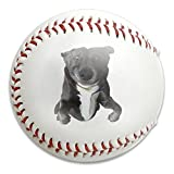 Nvthenpiaoliang Adorable Pug Dog With Funny Face Soft Standard Practice Ball Baseball Game Ball