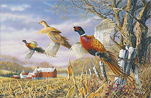 High Field Flush by Terry Doughty Laminated Art Print, 12 x 8 inches