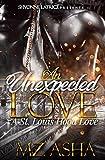 An Unexpected Love: A St. Louis Hood Love