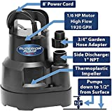 Superior Pump 91016 Thermoplastic Oil-free Utility