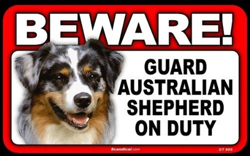 BEWARE Guard Dog on Duty Sign - Australian Shepherd