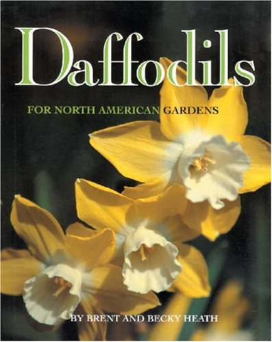 Daffodils for North American Gardens by Brand: Bright Sky Press