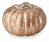 October Hill Metallic Patina Pumpkin of Mine Decoration, 7-Inch