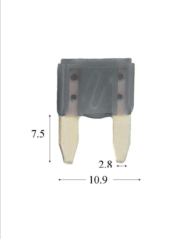 Innovo Mini-Flachsicherungen Rot 12 x 10 A